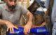 repair cafe du pays d'aix, réparation d'un over-board